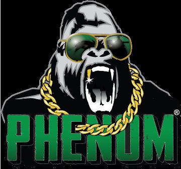 logo - phenom
